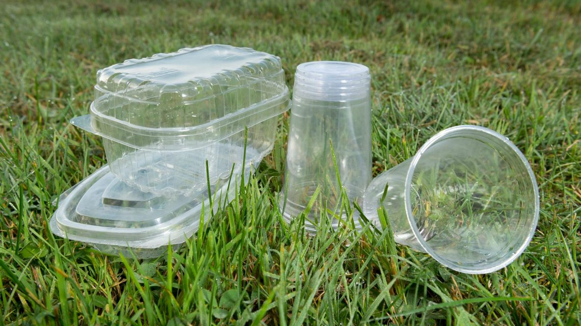 Plastic trays in the grass